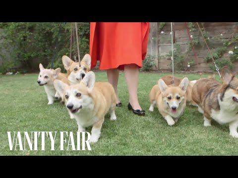 Meet the Queen's Royal Corgis   Vanity Fair