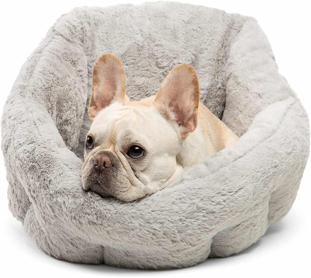 Best Friends by Sheri Deep Dish Cuddler Best for Small Dogs