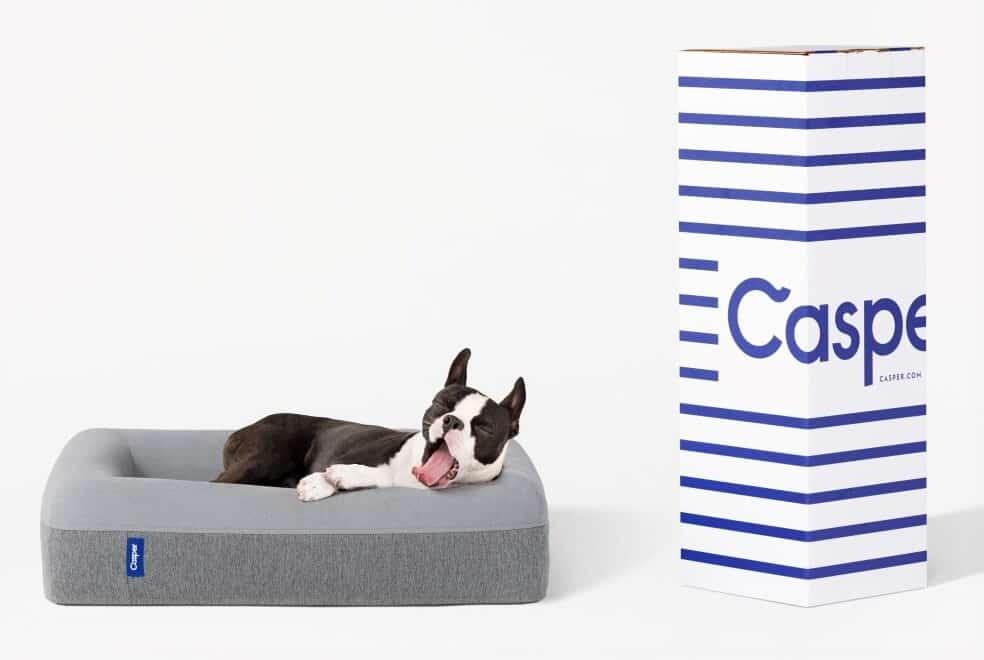 Casper Memory Foam Dog Bed Best Overall