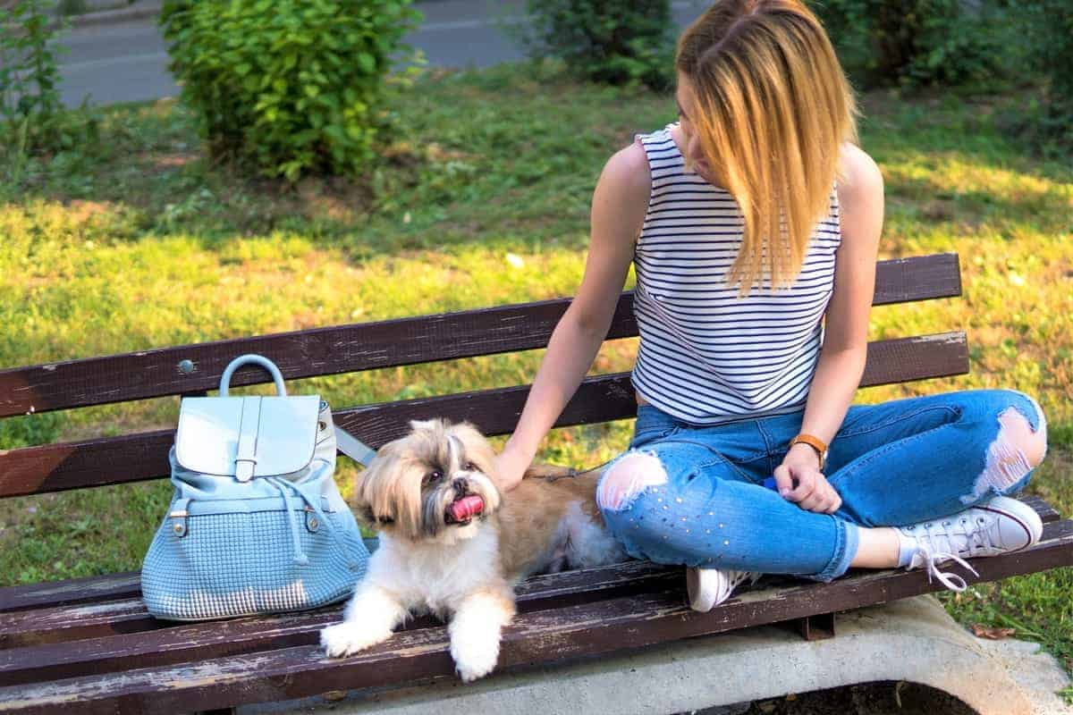 Woman with an adopted Shih Tzu in a park